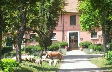 Country House Villa delle Rose
